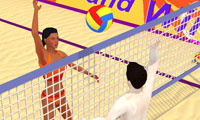 Summer Sports: Beach Volleyball