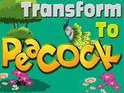 Transform to Peacock